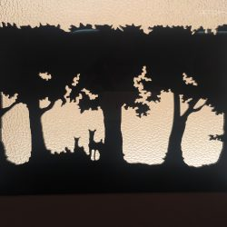 غابة أكريلك