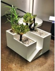 حوض نباتي ثلاثي الأبعاد